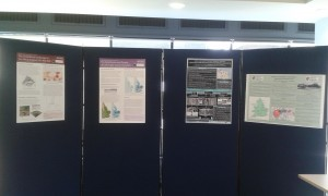 The presentations included posters.